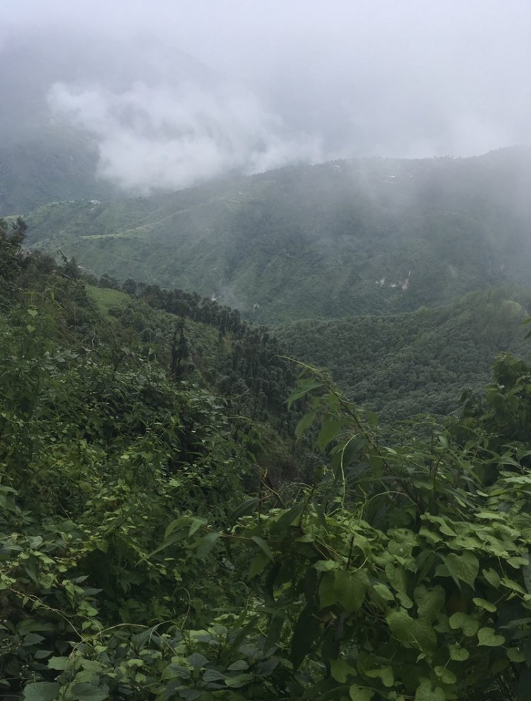 View from camel back road: mussoorie